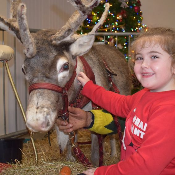 Christmas party in Wyndford and Broomhill with reindeer and Cara Hughes